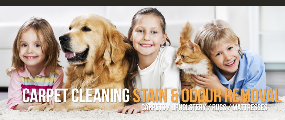 slide-002-carpet-cleaning-services.jpg